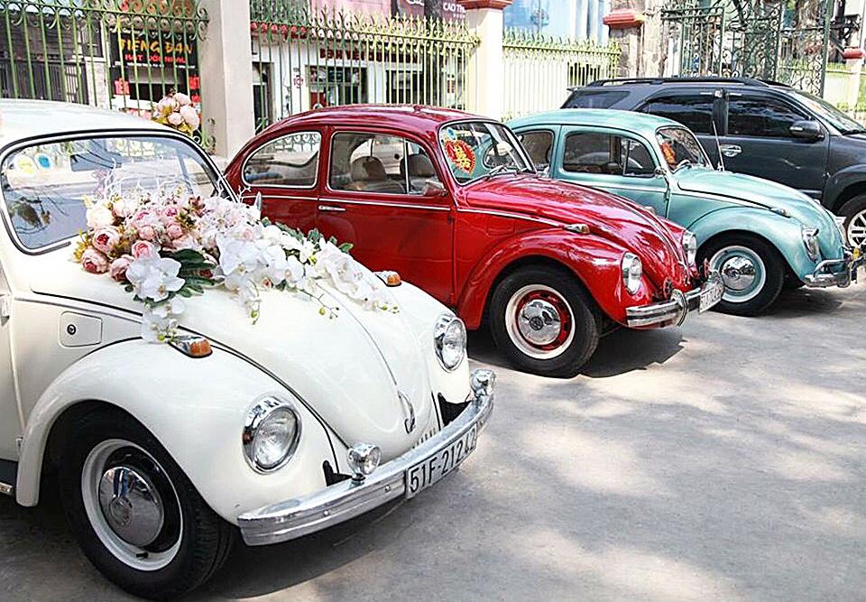 xe hoa con bọ cổ